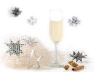 Silvester Rezepte - Feiern bis zum neuen Jahr!