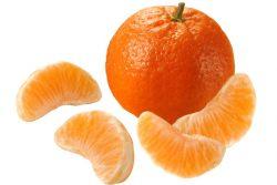 Najboljši recepti za jedi iz mandarin