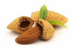 Najbojši recepti za jedi iz mandeljev