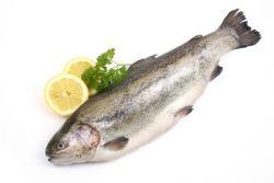 Najboljši recepti za sladkovodne ribe