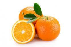 Najboljši recepti za jedi iz pomaranč