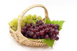 Najboljši recepti za jedi z vinom