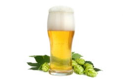 Najboljši recepti za jedi s pivom