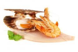 Najboljši recepti za ribe in morske sadeže