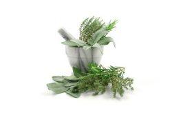 Najboljši recepti za jedi z zelišči in začimbami