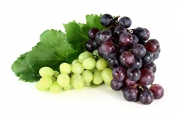 Najboljši recepti za jedi z grozdjem