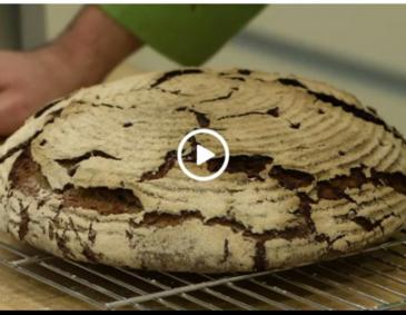 Video - Krustenbrot
