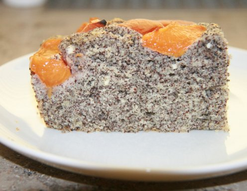 Topfen Mohn Marillenkuchen Rezept Ichkoche At