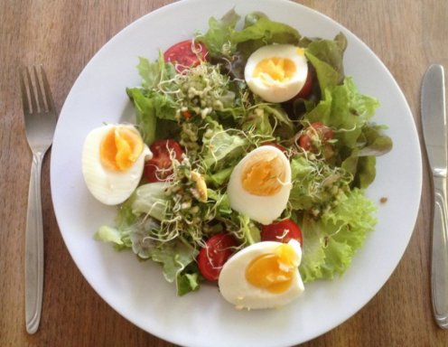Luzerne Salat