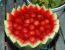 Bovla iz lubenice