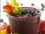 Borovničev smoothie