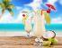 Hawaii Cooler